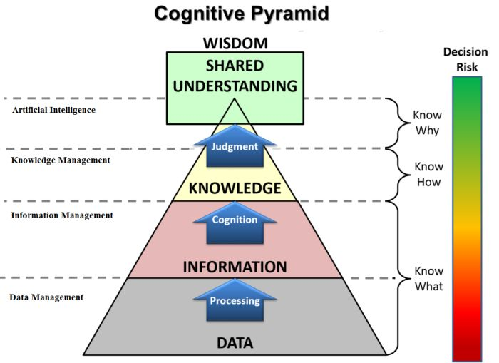 Cognitive Function Pyramid, adapted from Liew (2007).